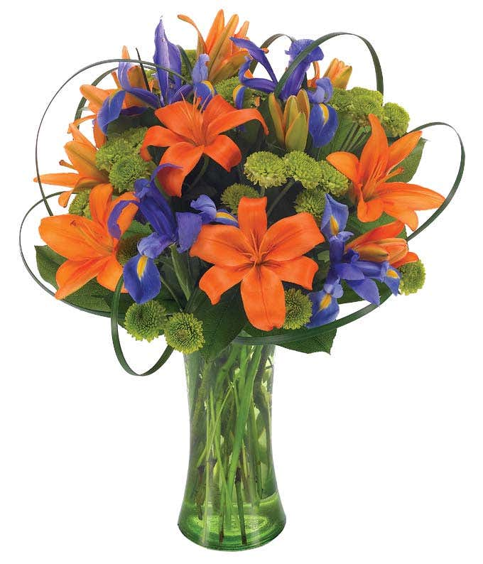 Orange asiatic lilies, iris and green button poms in tall vase