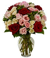 Red roses with pink and white spray roses in a vase