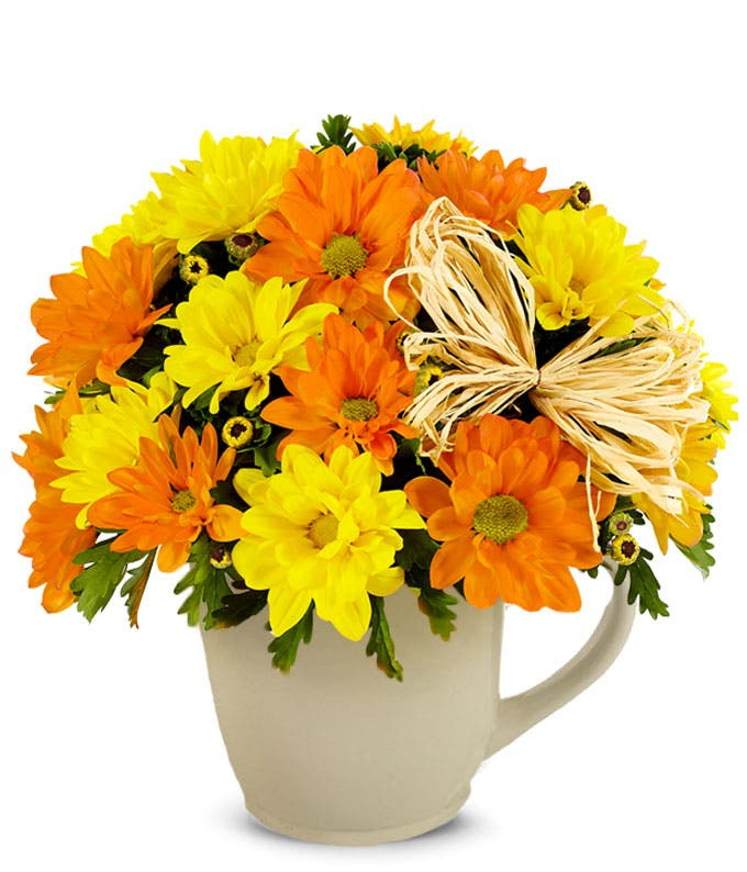 Daisy Mug Bouquet