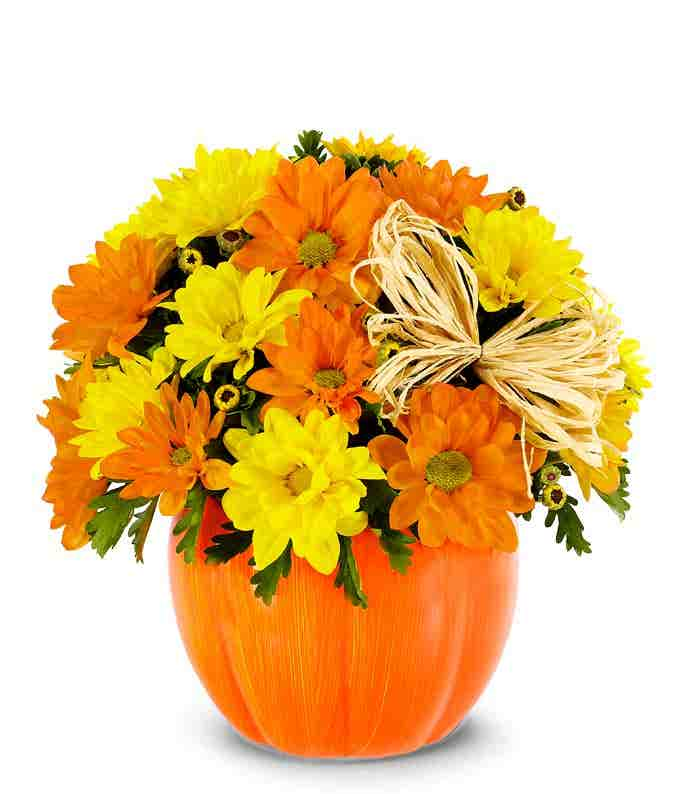 The Daisy Pumpkin Arrangement