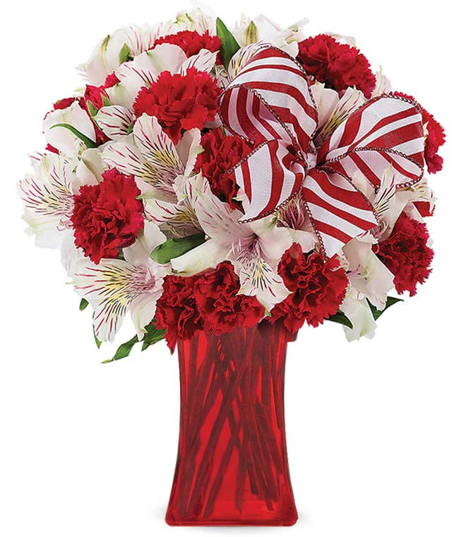 Red carnations and white alstroemeria in a red vase with holiday bow