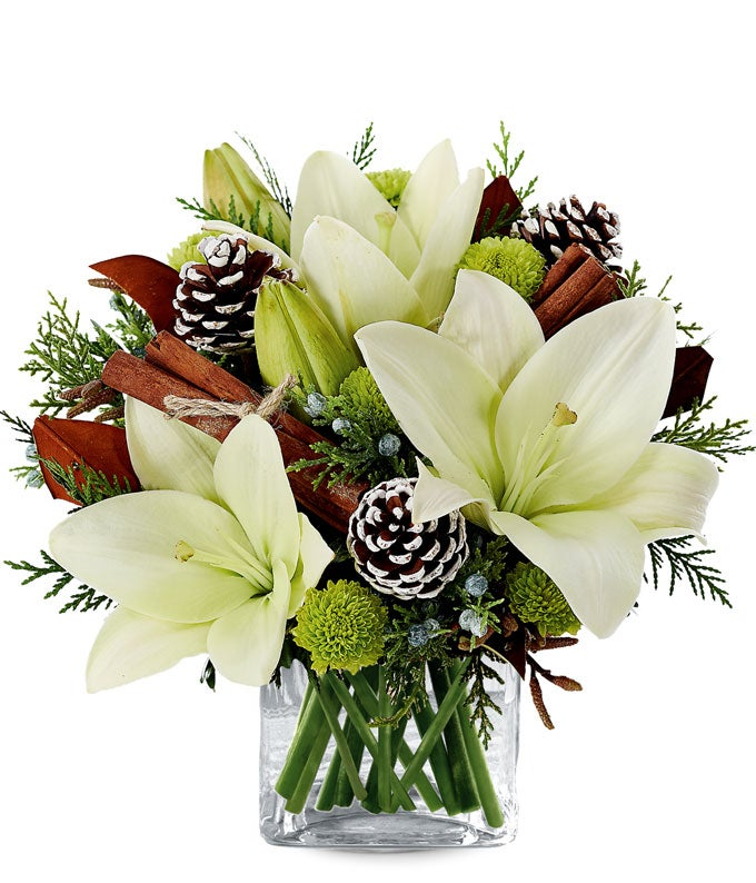 Christmas Plants | FromYouFlowers®