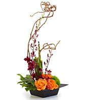 Burgundy orchid and orange roses in unique arrangement