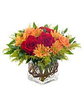 Red roses and orange daisies in a Fall bouquet