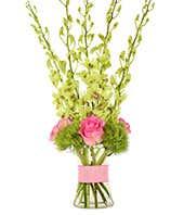 Splendid Orchid Bouquet
