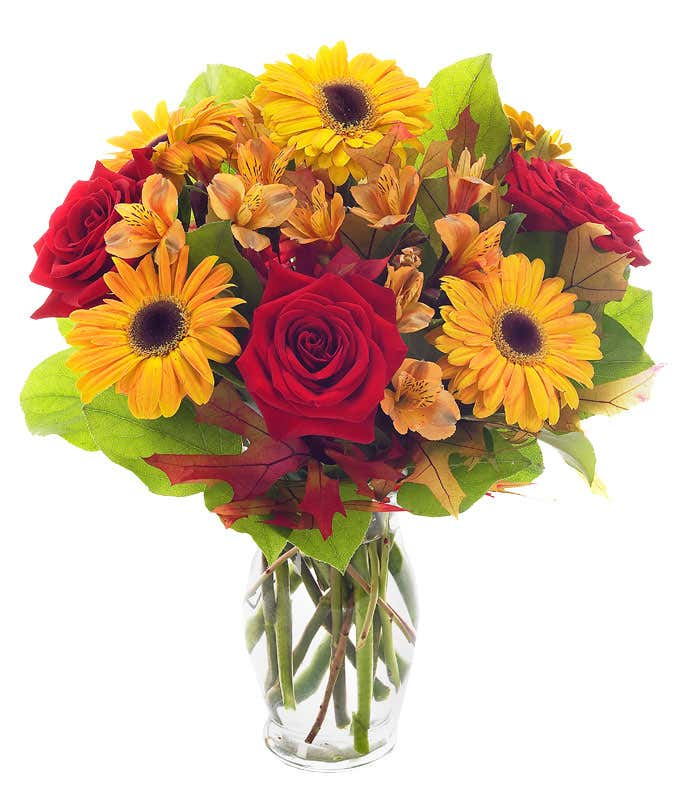 Red roses, orange alstroemeria and bi-color gerbera daisies