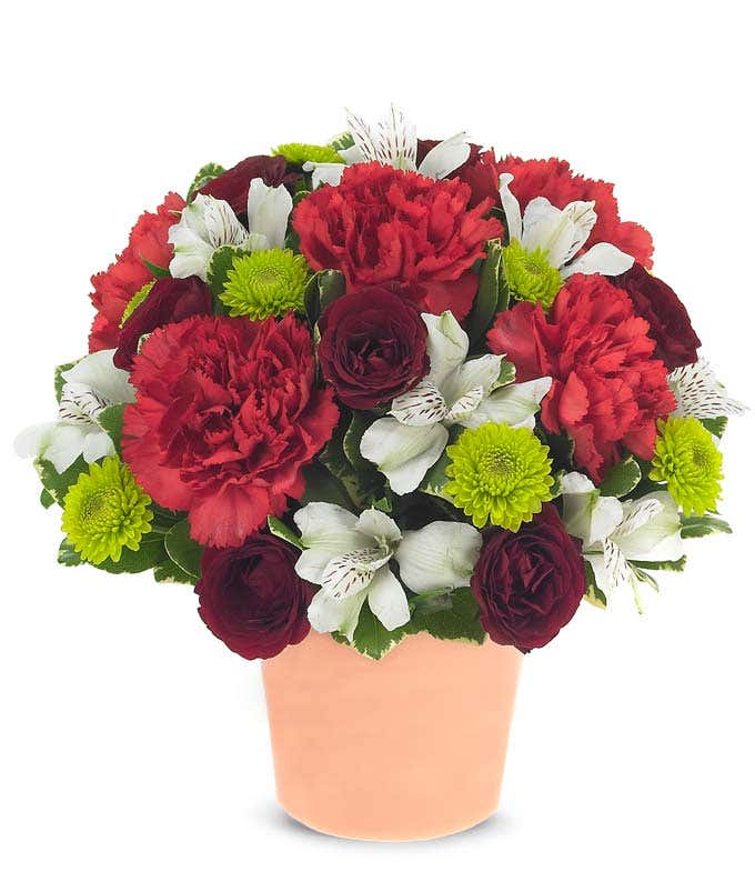 Red carnations with green poms all tied together with white alstroemeria