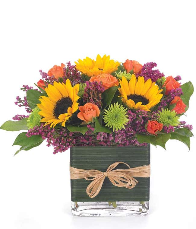 Sunflower and orange roses in square glass vase