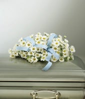 Infant Casket Spray With Daisies & Blue Ribbon