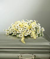 Infant Casket Spray With Daisies - Yellow