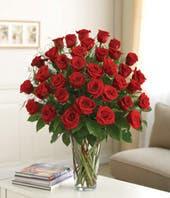 Three Dozen Roses For Sympathy
