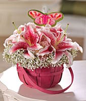 Stargazer lilies, pink hydrangea and baby's breath in pink basket