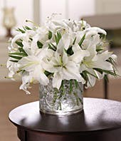 White stargazer lilies delivered in a modern circular vase