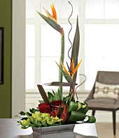 Birds of paradise, red roses and gladiolus in tropical bouquet
