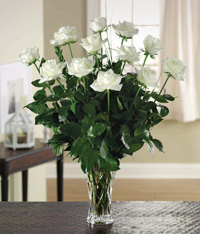 White dozen rose arrangement with Lenox vase