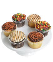 Fall Belgian Chocolate Cupcakes - 6 Pieces