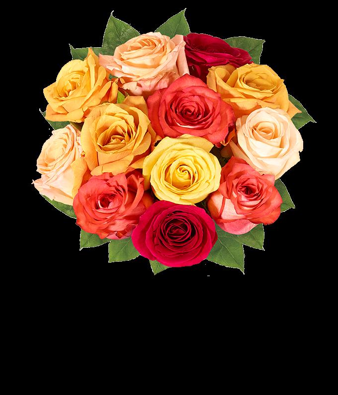 One Dozen Boo-tiful Halloween Roses