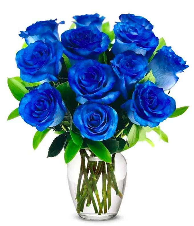 One Dozen Blue Jewel Roses