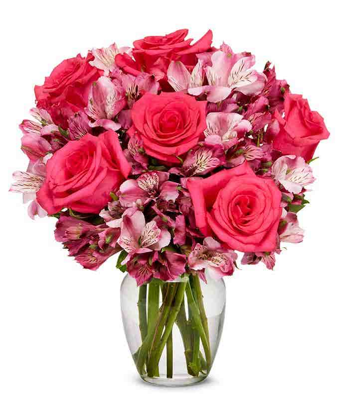 Ma Chère Rose