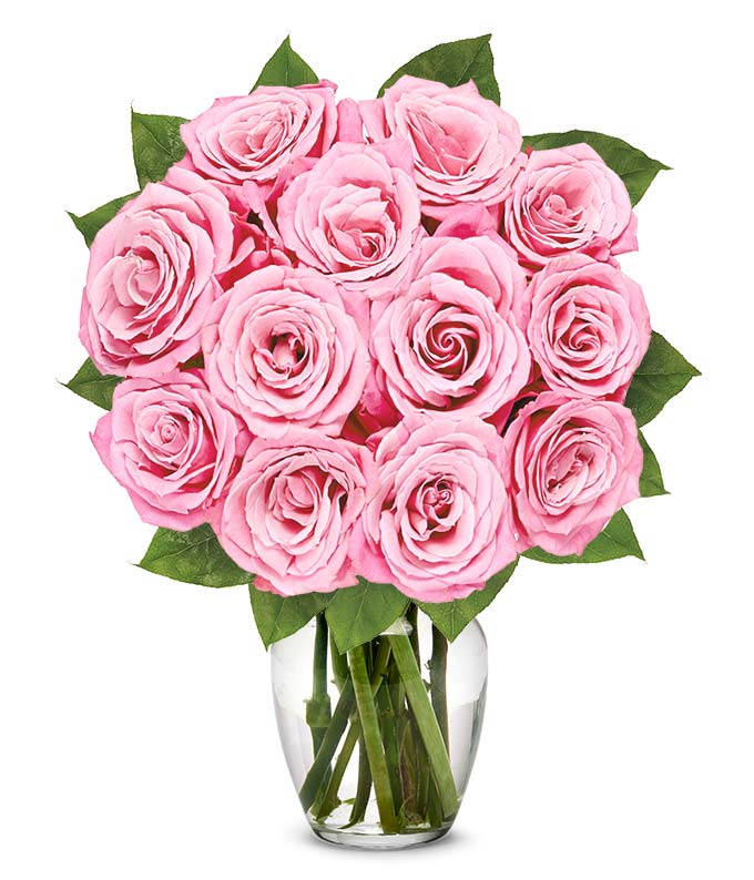 One dozen pink roses for delivery