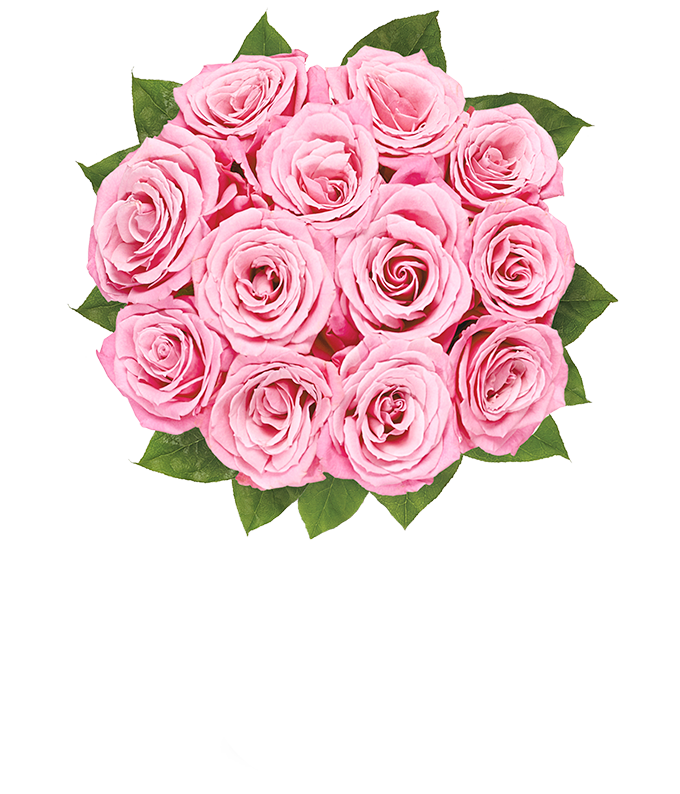 Pink flowers hot pink flower delivery fromyouflowers one dozen pink roses for delivery on valentines day next day flower delivery mightylinksfo Images