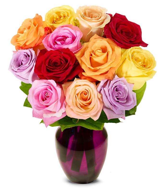 One dozen mixed Mother's Day roses for delivery