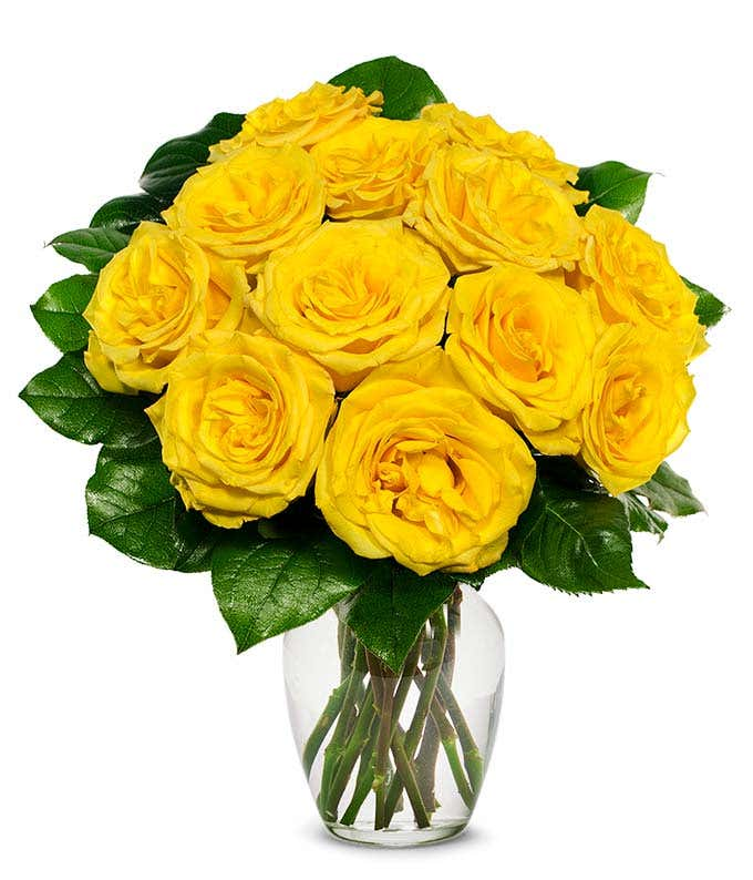 one dozen yellow roses for delivery