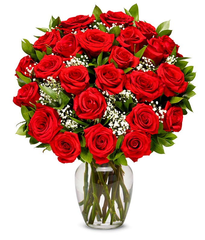 Two dozen Valentine roses in red for delivery