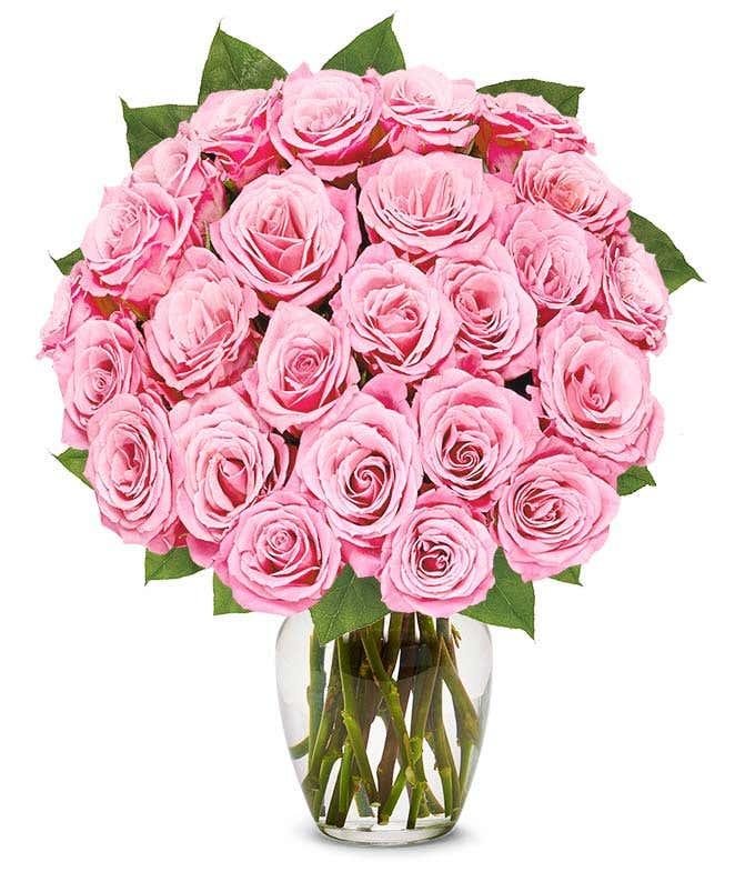 Two dozen long stem pink roses