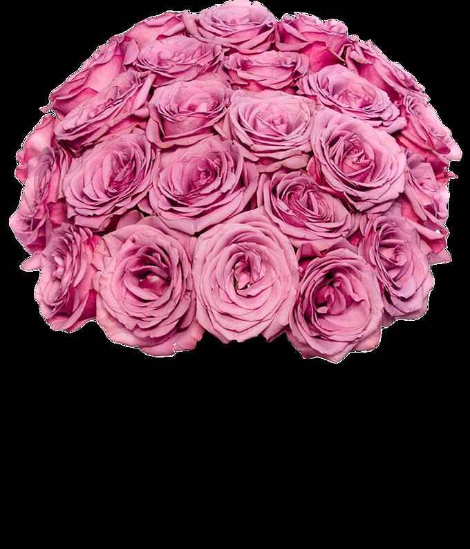 Two Dozen Purple Roses Delivered
