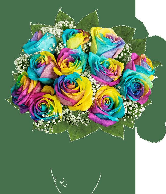 One Dozen Pride Roses