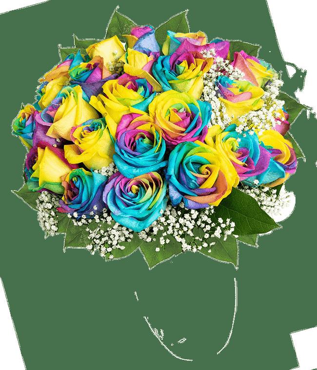 Two Dozen Pride Roses
