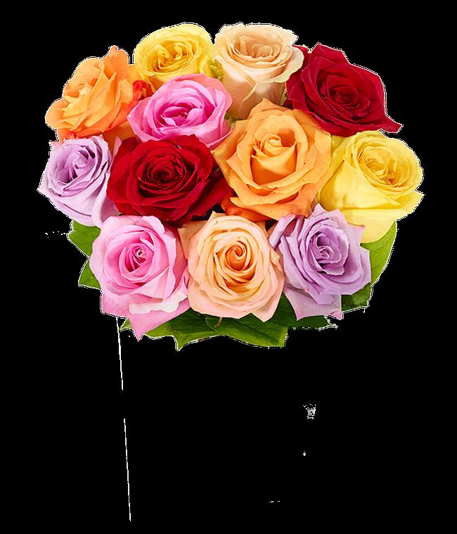 One Dozen Love is Love Rainbow Roses