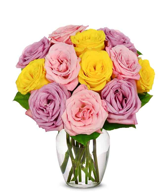 Mother's Day Roses with pink, yellow and purple roses