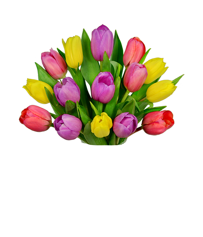 Pastel tulip bouquet with purple tulips and light pink tulips