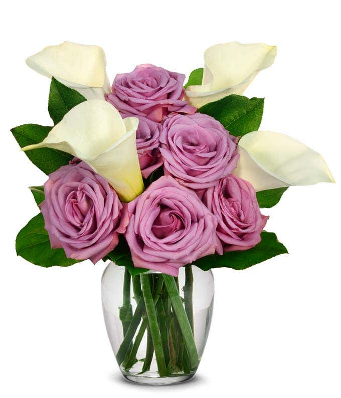 Purple roses with white calla lilies