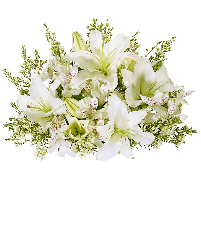 White lilies, white alstroemeria and white wax flowers