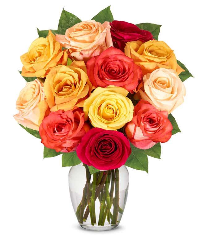 One Dozen Fall Roses