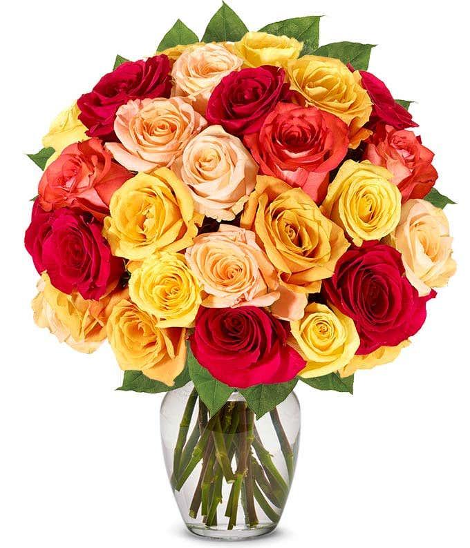 Two dozen Autumn roses