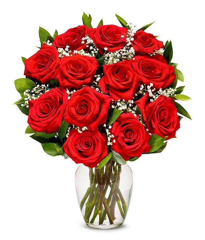 One Dozen Valentine Long Stem Red Roses