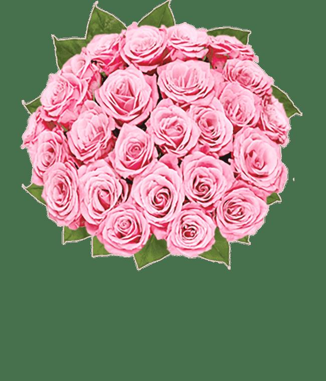 Two Dozen Light Pink Breast Cancer Awareness Roses