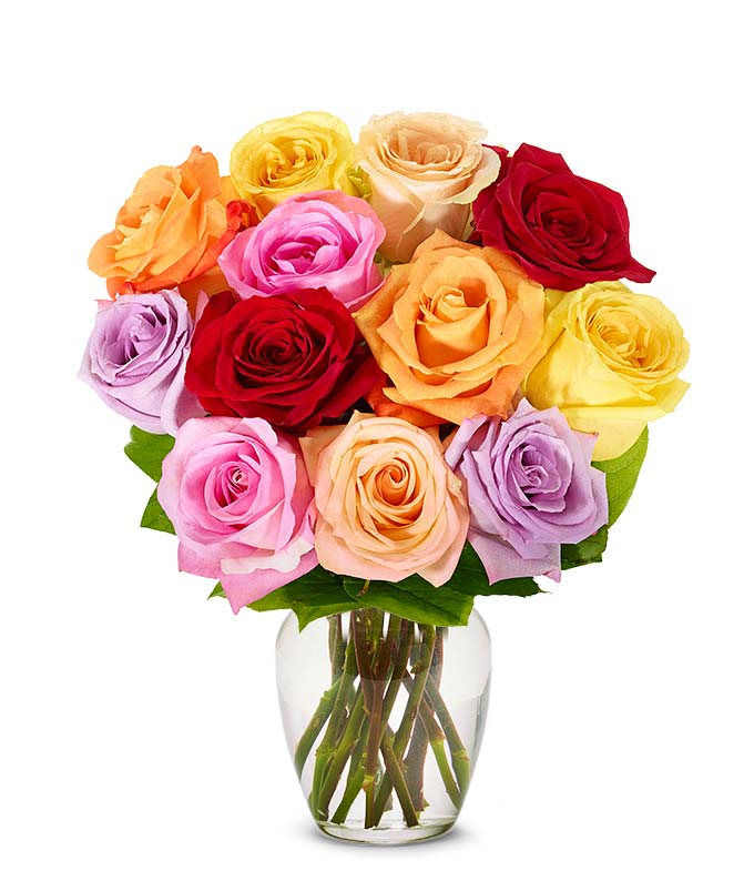 One Dozen Rainbow Roses