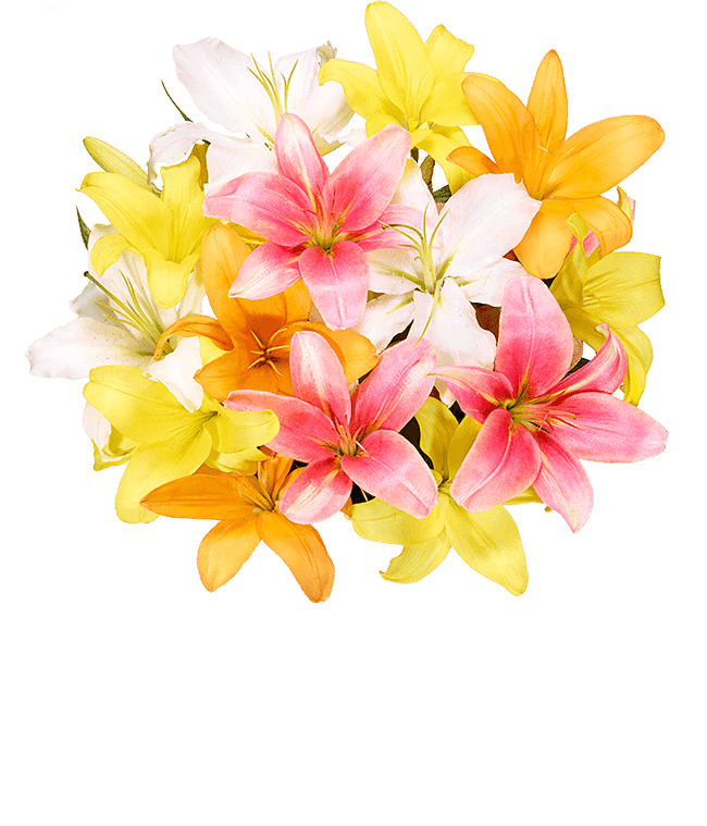 Lilies for Mother's Day