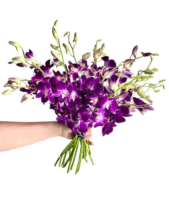 Purple Dendrobium Orchids - Deluxe