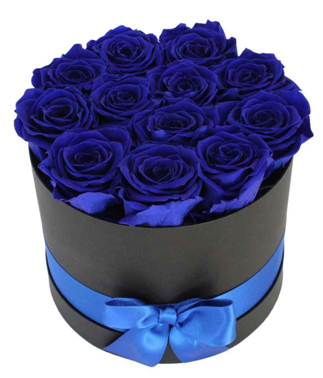 Luxury Dozen Preserved Sapphire Blue Roses
