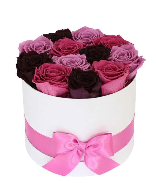 Luxury Dozen Preserved Purple Rainbow Roses