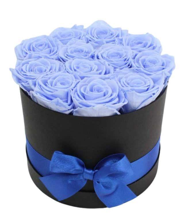 Luxury Dozen Preserved Sky Blue Roses