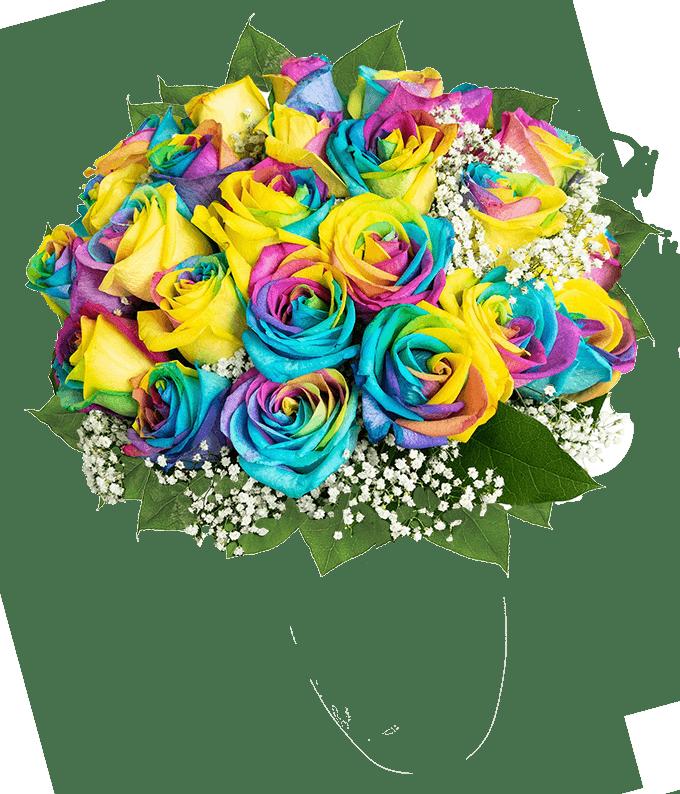 Two Dozen Wild Rainbow Roses
