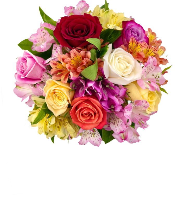 Mixed roses are delivered with Alstroemerias