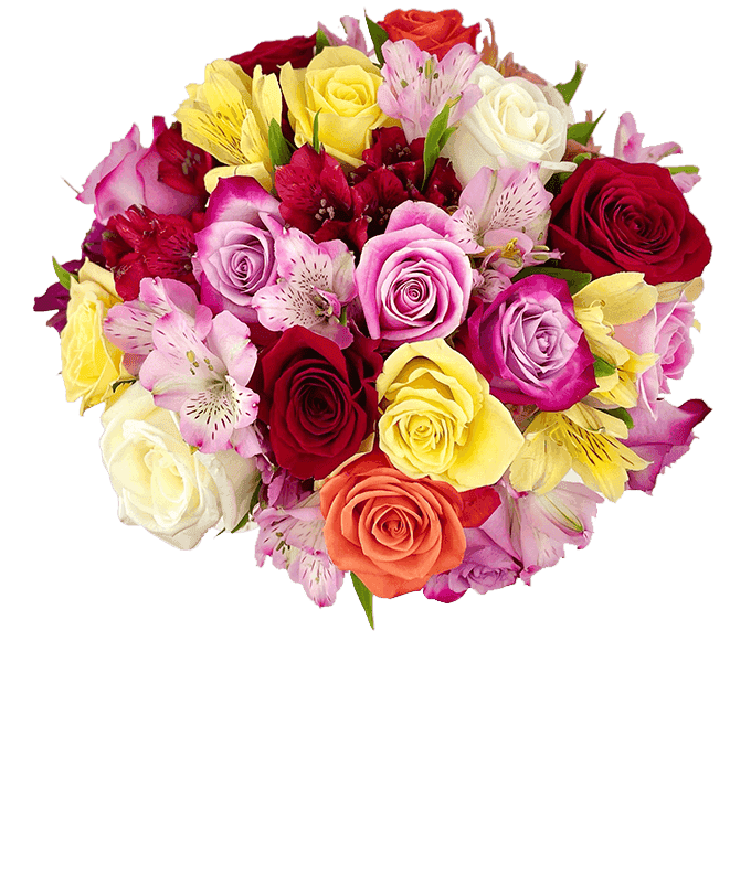 Mixed roses and alstroemeria in different colors